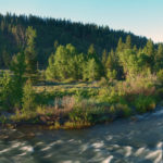 featured image showing the Truckee River at Truckee Springs. Photo by Bill Stevenson