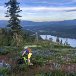 featired image showing a mountain biker on the Donner Lake Rim Trail