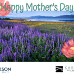 featured image showing Lupine Meadow - Lake Tahoe, California as a Mother's Day Card