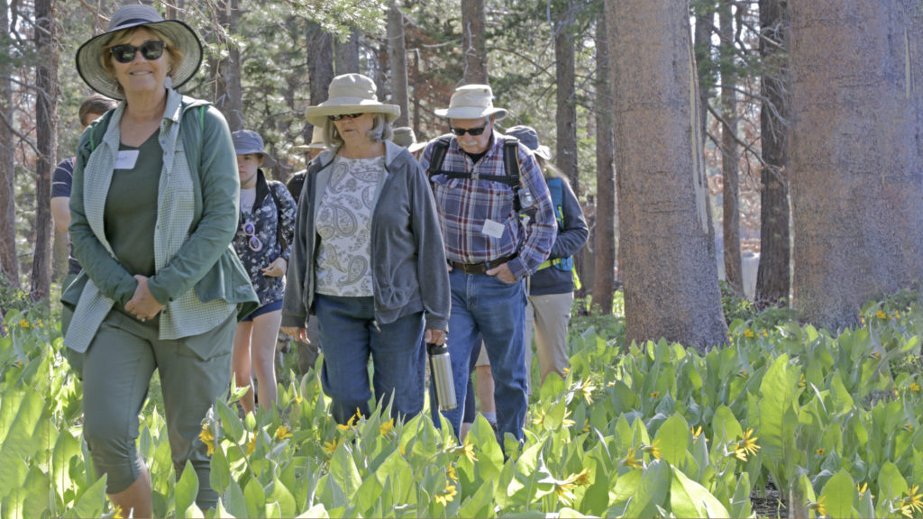 featured image showing a expert lead a guided hike through the Tahoe area.